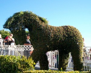 Draft horse topiary - It's A Small World - Disneyland - 2012