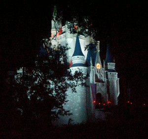 Cinderella Castle - Magic Kingdom - Walt Disney World - 2009