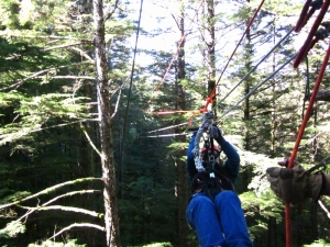 C. Rickrode. Rainforest Canopy & Zipline Expedition. Juneau, Alaska. Photo by P. Rickrode 2014.