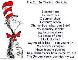 cat in hat funny