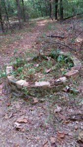 Old well at Rocky Springs. Photo by P. Rickrode, August 2015.