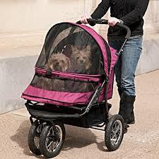 dogs-in-stroller