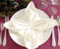 folded napkin 2