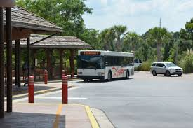 Disney bus stop