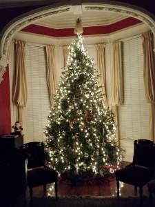 Tree 2017